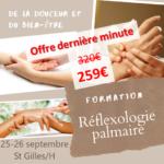 Formation Réflexologie Palmaire